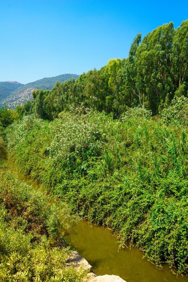 Download Kishon Park (HaAmakim Park) Stock Image - Image of beautiful, tree: 57689257