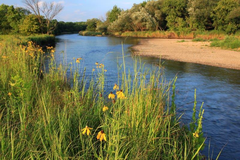 Kishwaukee rzeka Illinois zdjęcie royalty free