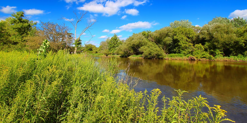 Kishwaukee rzeka w Północnym Illinois obrazy royalty free