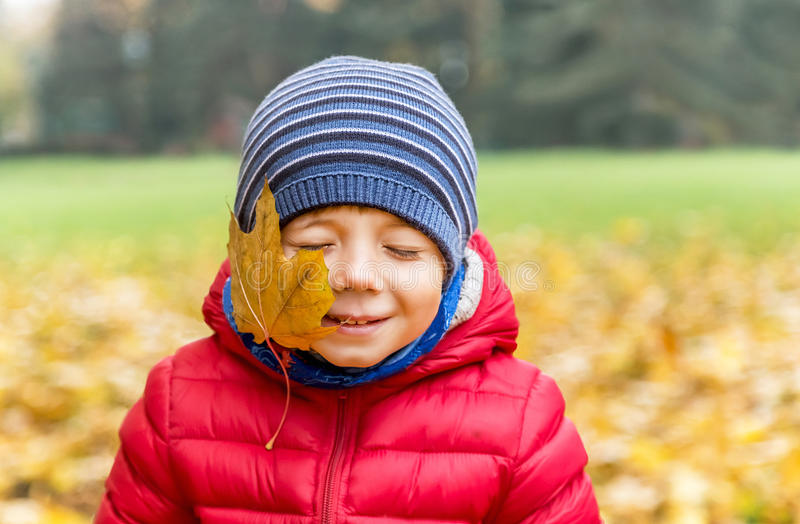 Kiss of the autumn. Happy little boy with yellow maple leaves on the face is in the park. Cute smiling kid enjoying fall. Nature background. Copy space royalty free stock photo