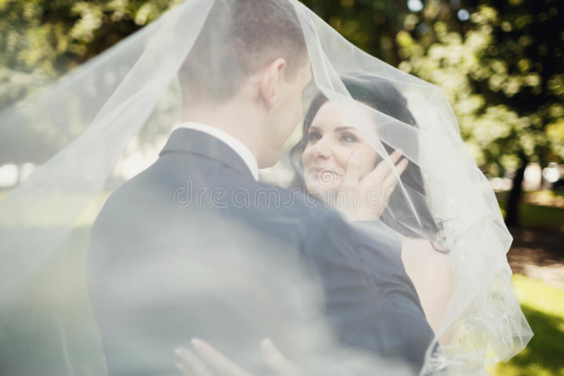 Kiss of bride and groom under transparent veil stock image