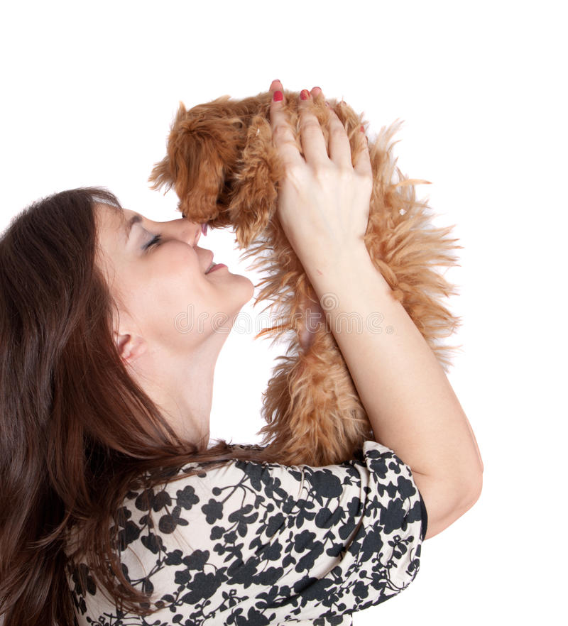 Kiss on a nose stock image. Image of domestic, cheerful ...