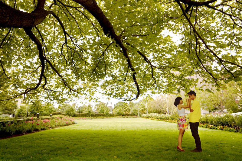 Download Kiss under the tree stock image. Image of loving, lifestyle - 22901571