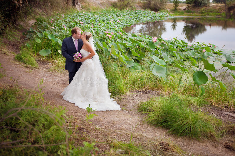 Download Kissing Bride And Groom Near Lotos Pond Stock Photo - Image: 17400852