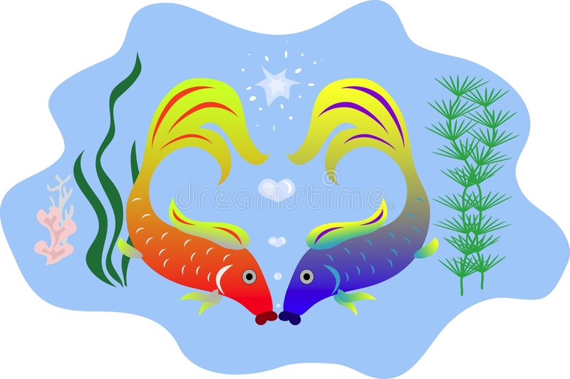 Kissing fishes stock photography