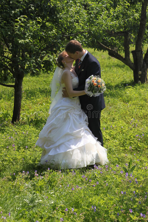 Download Kissing Married Couple Stock Photos - Image: 20900383