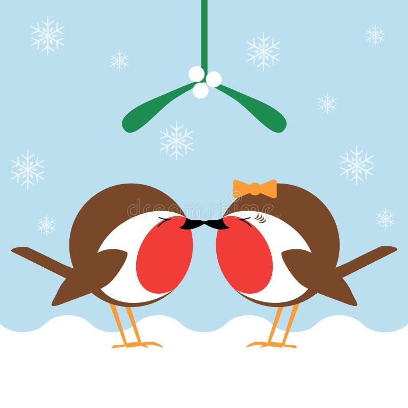 Kissing under the mistletoe. Two cartoon robin redbreasts kissing under the mistletoe vector illustration