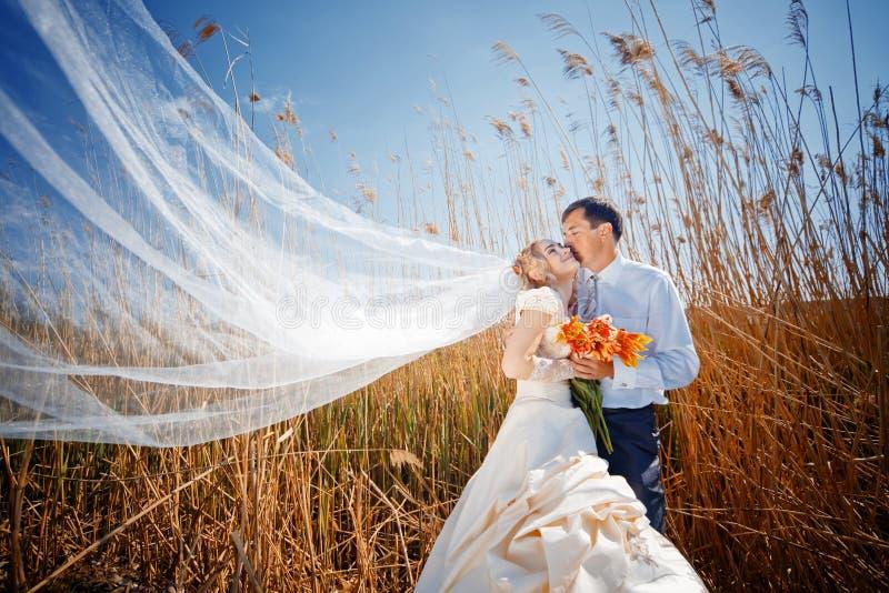 Kissing Wedding Couple Royalty Free Stock Photo