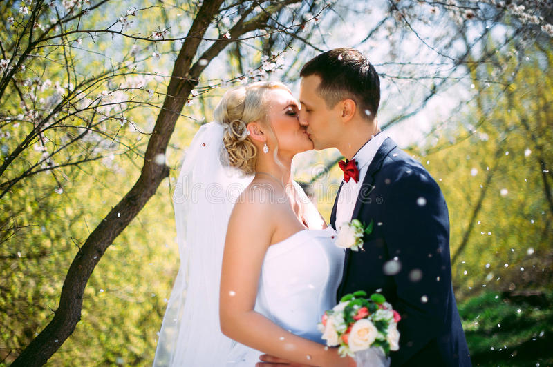 Kissing wedding couple in spring nature close-up portrait. Kissing wedding couple in spring nature close-up portrait outdoor in b royalty free stock photography