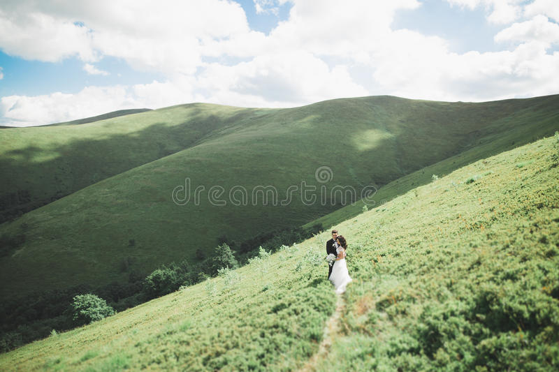 Kissing wedding couple staying over beautiful landscape stock images