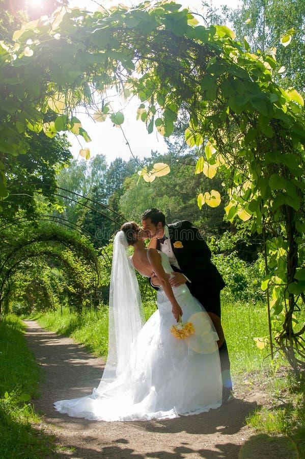 Kissing wedding couple royalty free stock photography