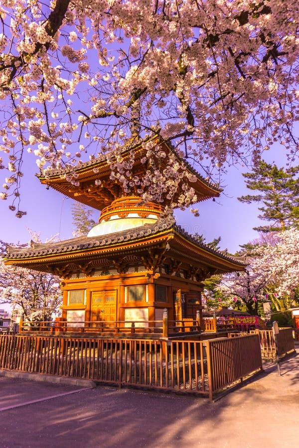 Kitain寺庙在Kawagoe镇埼玉的春天在日本 库存照片