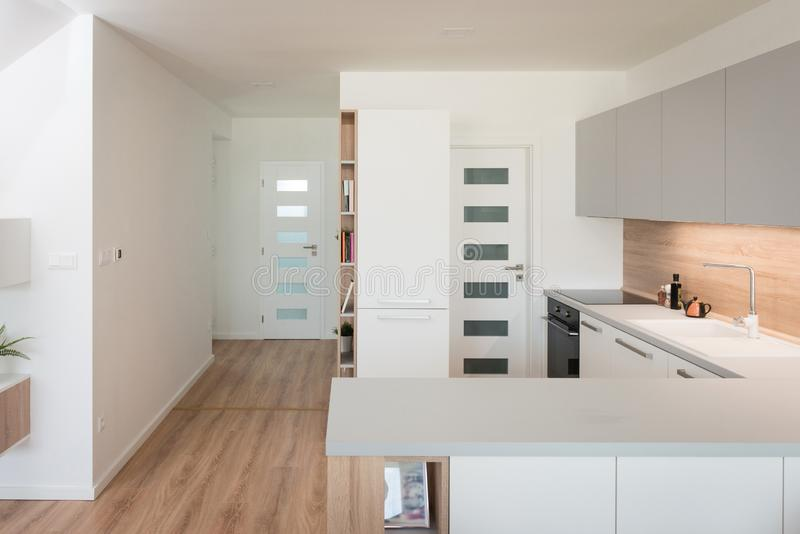 Kitchen with built-in appliances. Interior of contemporary kitchen with built-in appliances royalty free stock photography