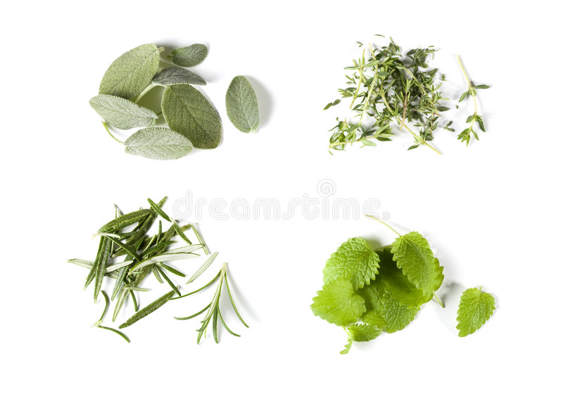 Kitchen herbs on white surface stock photography