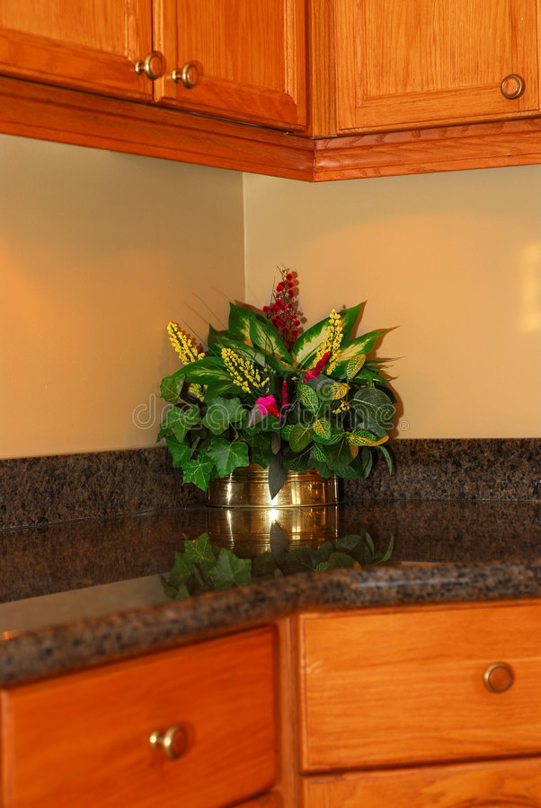 Download Kitchen Interior Royalty Free Stock Photos - Image: 2067058