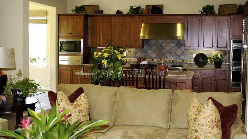 Download Kitchen & Living Room stock image. Image of decorated - 5449895