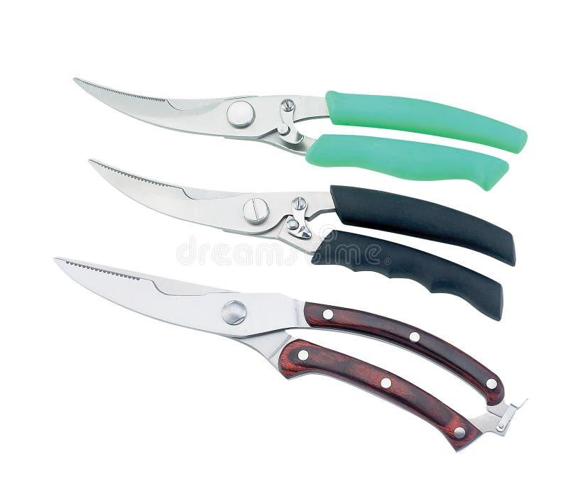 kitchen scissors stock photo