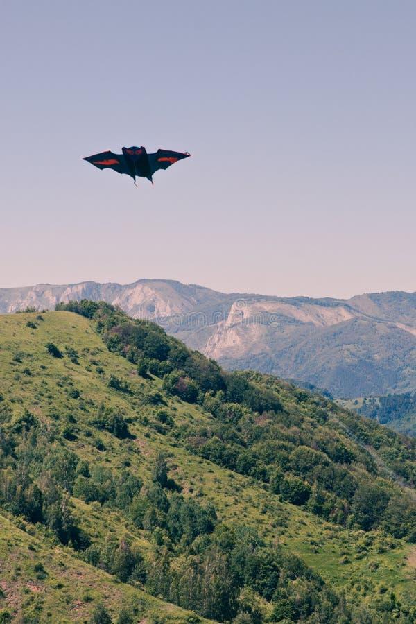Download Kite stock photo. Image of kite, green, color, vegetation - 25344404