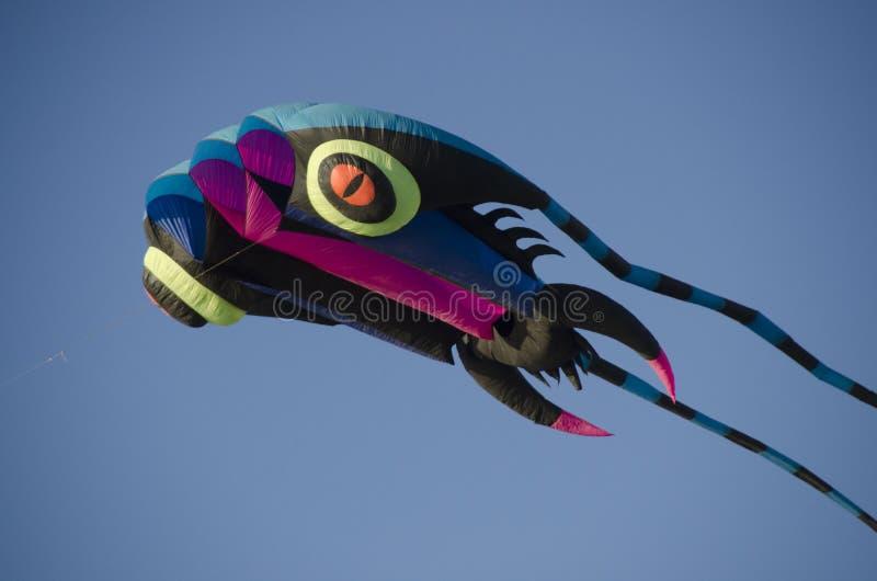 kite fotografie stock