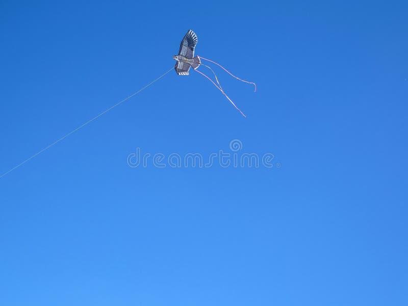 kite imagem de stock