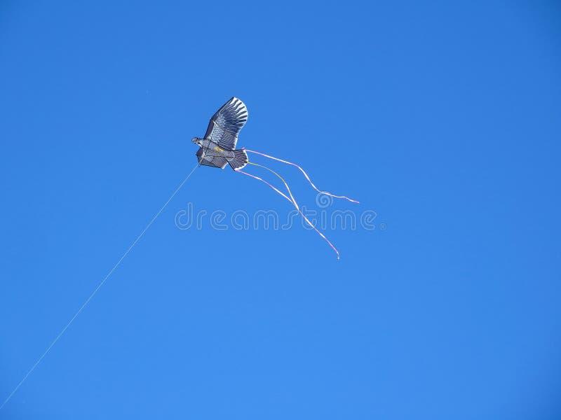 kite fotos de stock