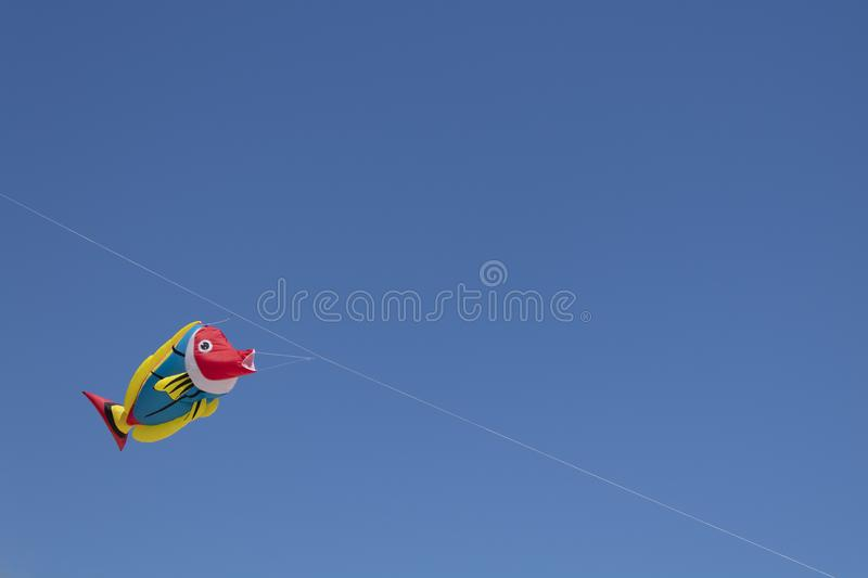 Kite competition on a sunny hot day stock photo