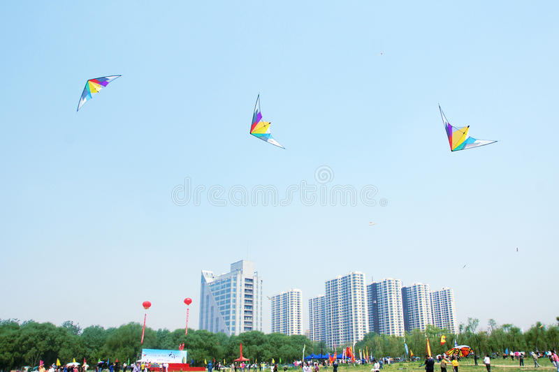 Download Kite game editorial stock photo. Image of friend, game - 24854213