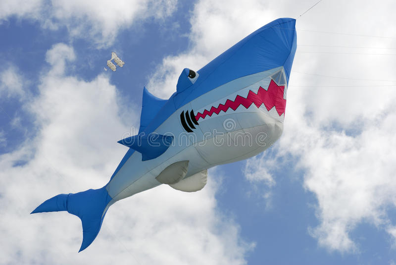 Kite shark high up stock images