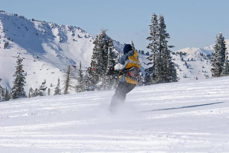 Download Kite skiier stock photo. Image of kiteskiing, skiing - 14490950