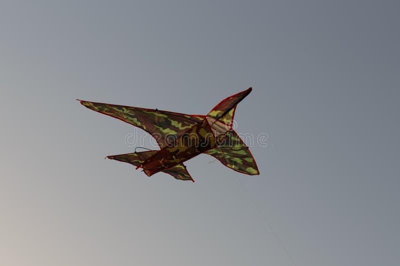 Kite at sunset. Of Sharjah UAE stock photos