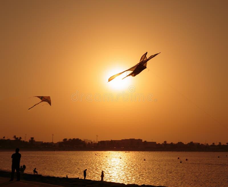 Kite at sunset. Of Sharjah UAE royalty free stock photo