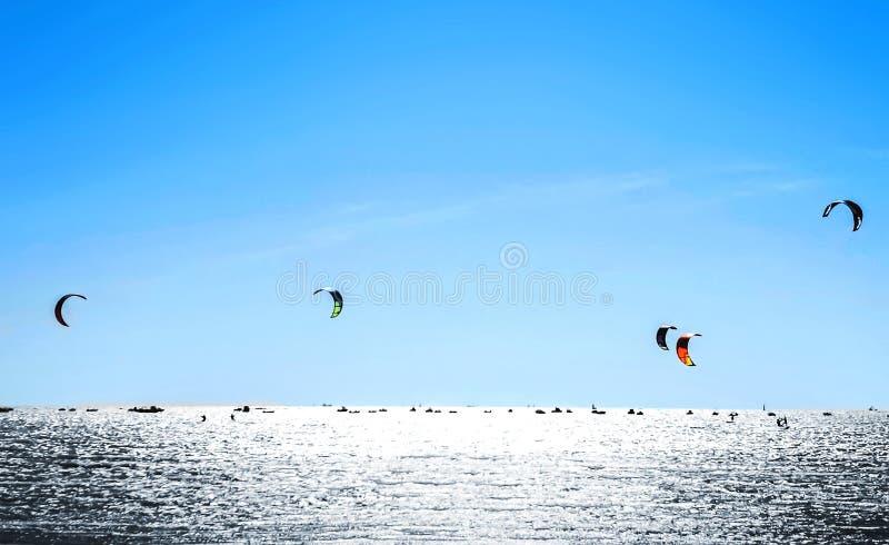 Kiteboarding Kania surfing przeciw pięknemu niebieskiemu niebu Wiele sylwetki kanie w niebie obraz royalty free