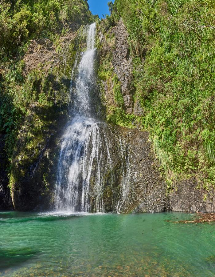 Kitekite falls in Piha in New Zealand. Falling from a height to an aquamarine pool below royalty free stock image