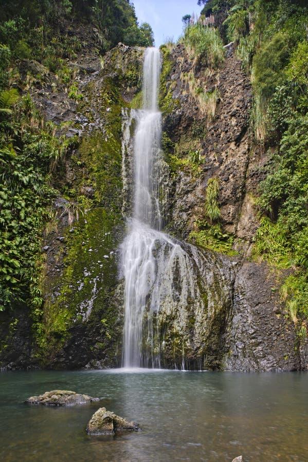 Kitekite Falls, Waitakere Ranges Regional Park, New Zealand. Kitekite Falls, Waitakere Ranges Regional Park, North Island, New Zealand stock images