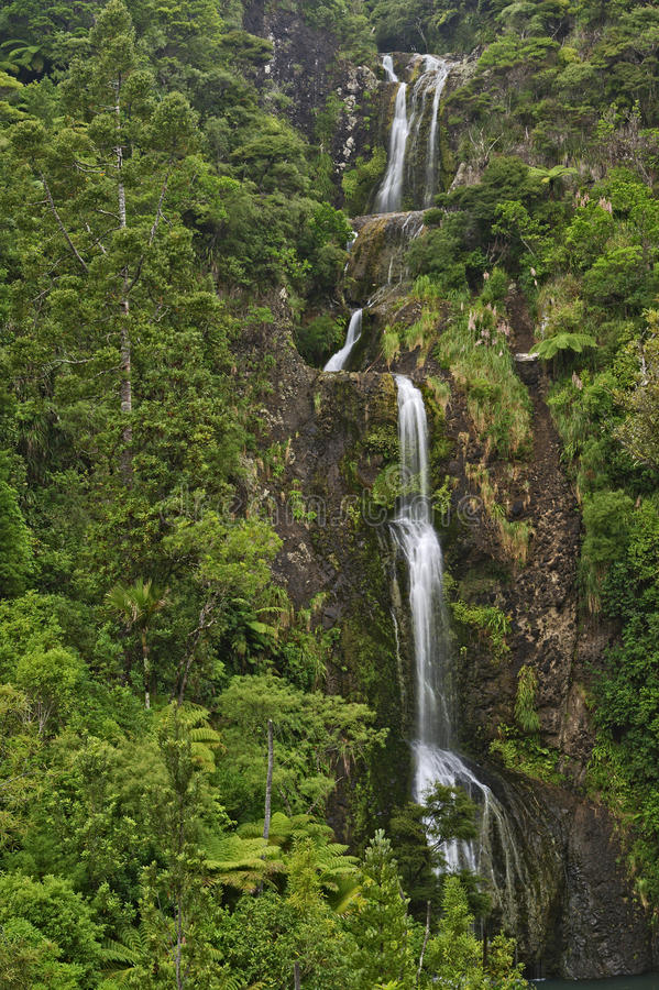 Kitekite Falls, Waitakere Ranges Regional Park, New Zealand. Kitekite Falls, Waitakere Ranges Regional Park, North Island, New Zealand royalty free stock image