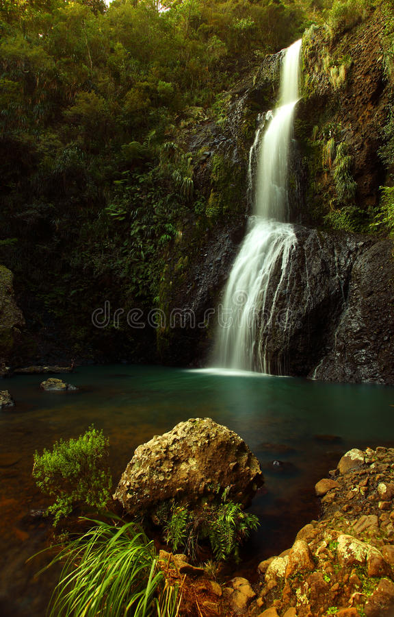 KiteKite Waterfall Piha royalty free stock photos