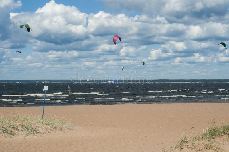 Kiters στον κόλπο μια ηλιόλουστη θυελλώδη ημέρα Άνθρωποι στην παραλία Θερινός αθλητισμός Θερινός τρόπος ζωής στοκ φωτογραφίες
