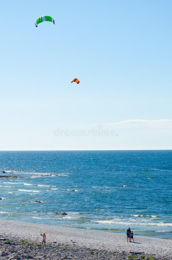 kites fotografia stock libera da diritti