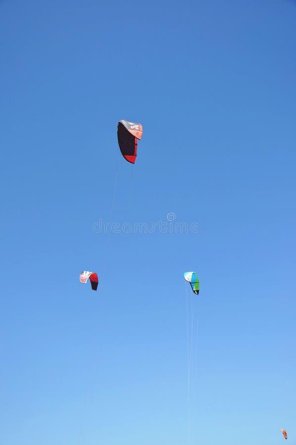 Kites royalty free stock photo