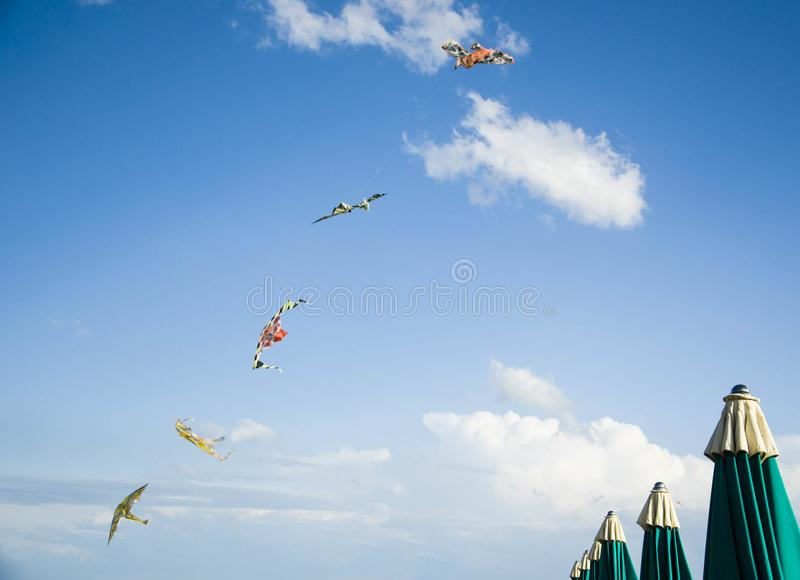 Kites and beach umbrellas royalty free stock images