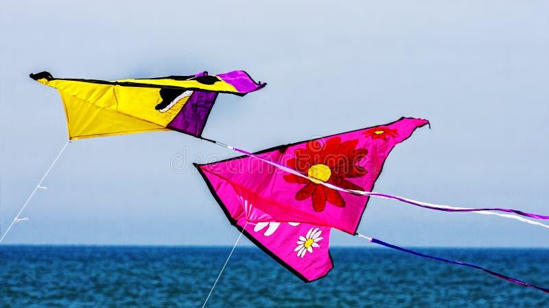 Kites in flight royalty free stock photography