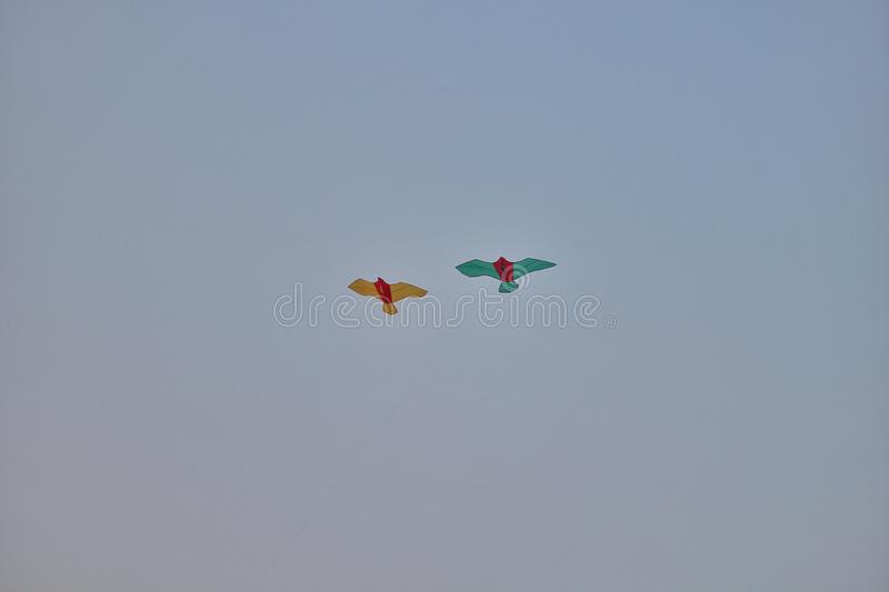 Kites flying in the sky stock images