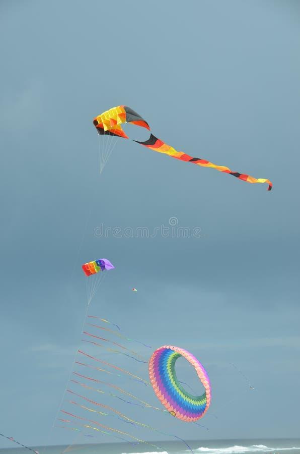 Download Three Kites At Lincoln City, Oregon Stock Image - Image of lincoln, kites: 101049301