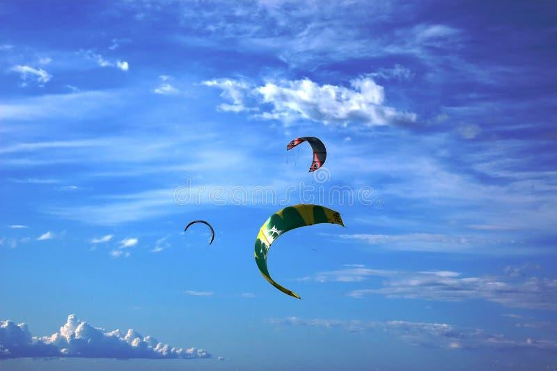 Kites in the skies stock image