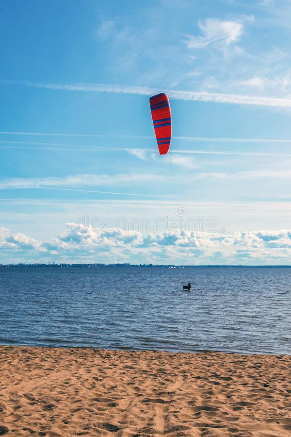 The kitesurfer enters the water stock image