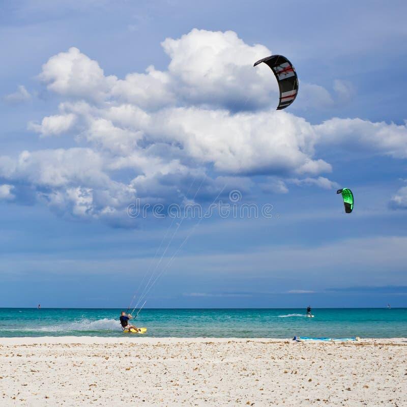 Kitesurfers fotografia de stock