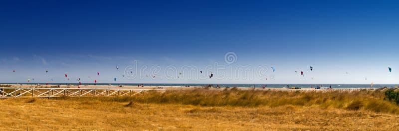 Kitesurfing 免版税图库摄影