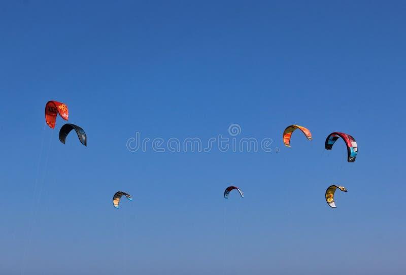 Kitesurfing en un día ventoso en Sydney fotografía de archivo libre de regalías
