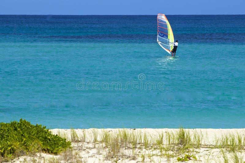 Kiting i St Barths som är karibisk fotografering för bildbyråer