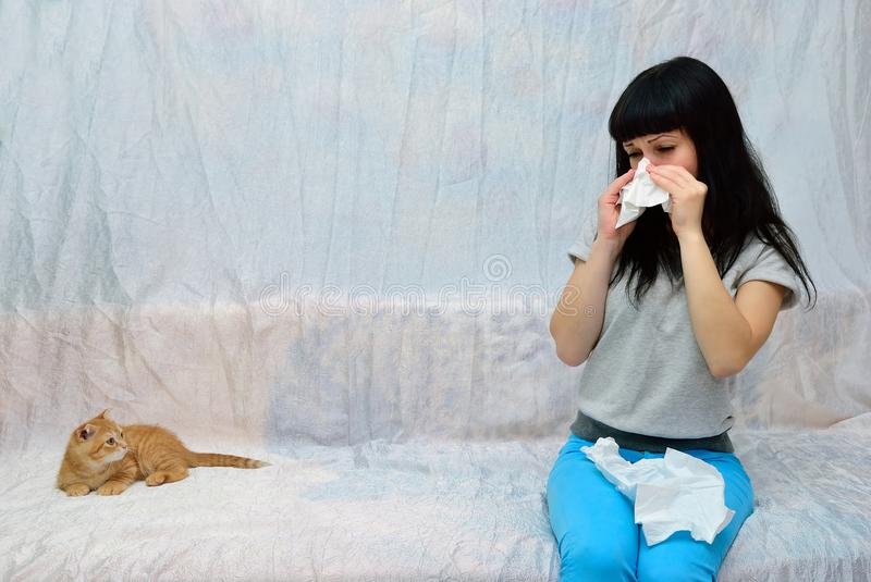 The girl is allergic to cat. The kitten is asleep. The girl is allergic to him royalty free stock image